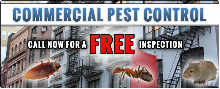 Pest Control NYC | Pest Control Service Contract NYC - banner